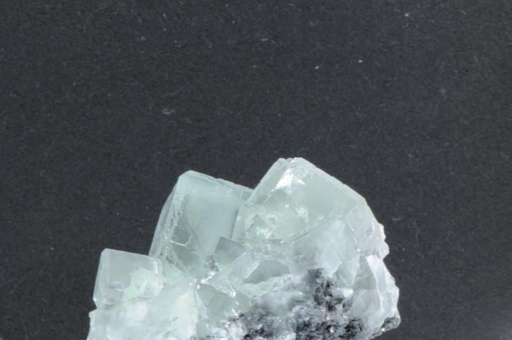 Dsc 3541