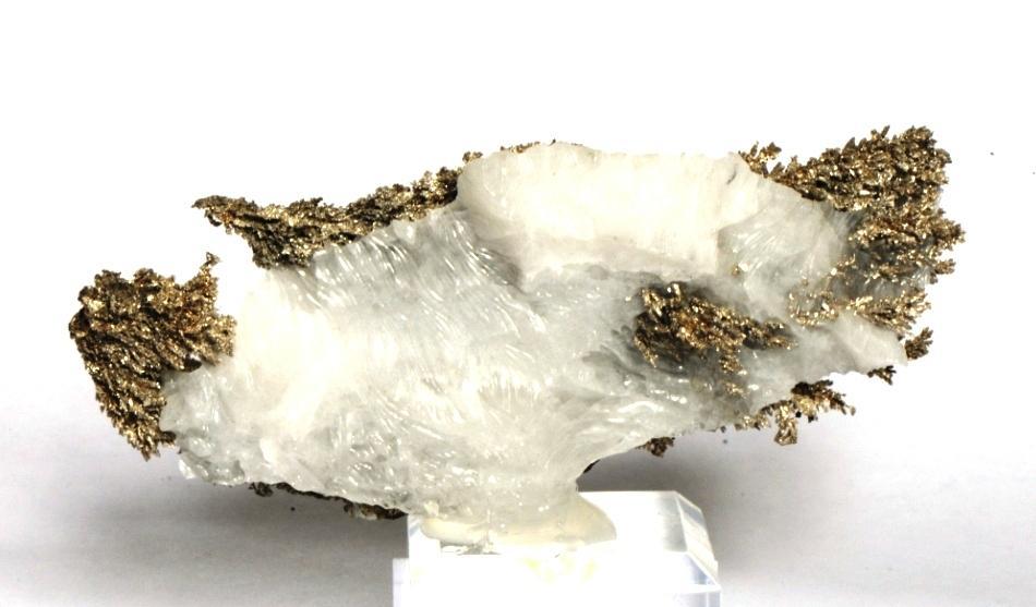 Dsc 9309 silver 42