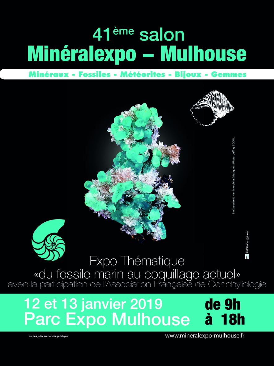 Mulhouse 2019